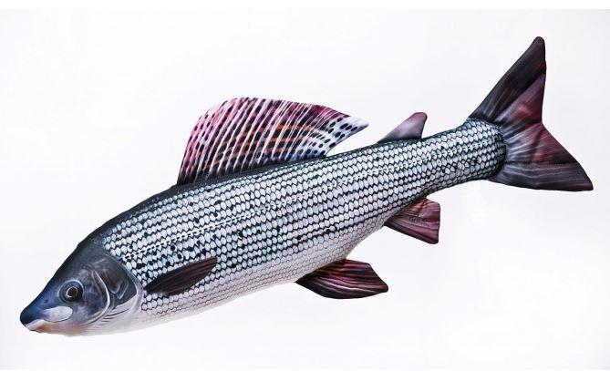 Gaby polštář Lipan 65 cm