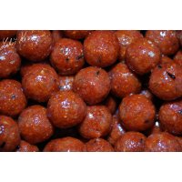 LK Baits Euro Economic Boilies Chilli Squid 5kg, 18 mm