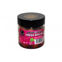 LK Baits Fresh Boilie Amur Special Spice Shrimp 18mm 250ml
